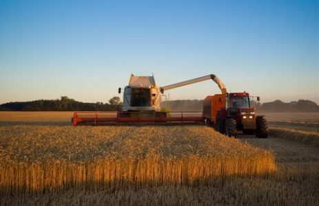 10 miljoen voor jonge boeren