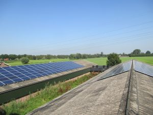 Canadian Solar zonnepanelen pluimvee