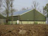 Zonnepanelen op het dak Marknesse