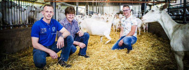 Familie van den Brink, geiten- en opfokbedrijf