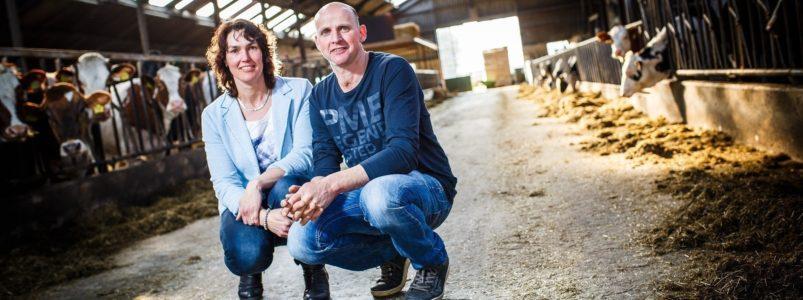 Familie van der Linde, melkveebedrijf