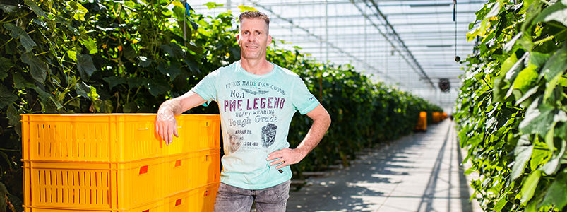 Familie Driessen, glastuinbouwbedrijf