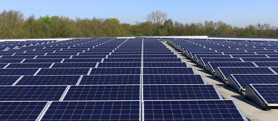 Bloomberg: zonne-energie in 2019 meest populaire energiebron ter wereld
