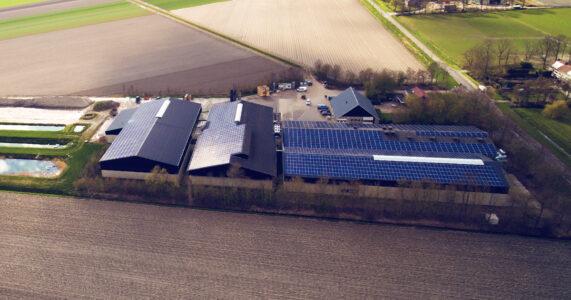Energy Storage NL over grootschalig pv met batterijen: 'Sector staat klaar, SDE++-subsidie moet'